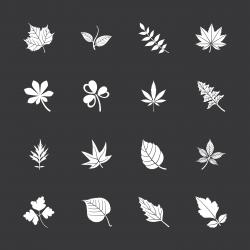 Leafs Shape Icons - White Series   EPS10