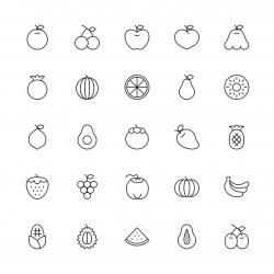 Fruit Icon - Thin Line Series