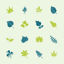 Leafs Shape Icons - Color Series | EPS10