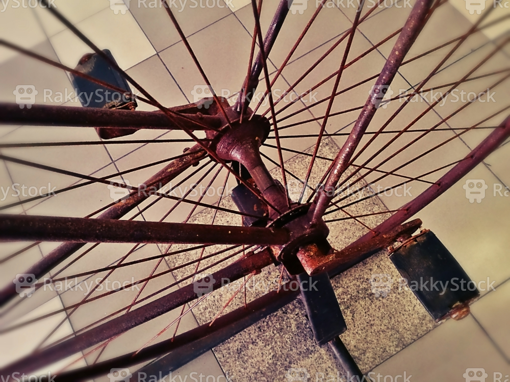 Old Wheel Bicycle