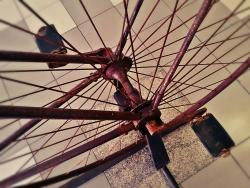 Old Wheel Bicycle