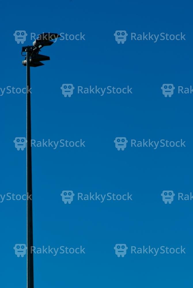 Cricket Spotlight